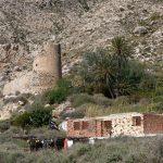 190402-2 (35) San Pedro (Cabo de Gata-Andalousie)
