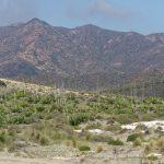 190403-2 (116) de San Jose à Playa de Genoveses (Cabo de Gata - Andalousie)