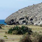 190403-2 (165) playa de El Monsul (Cabo de Gata - Andalousie)