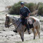 190403-2 (171) playa de El Monsul (Cabo de Gata - Andalousie)