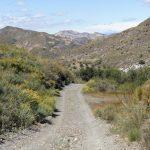 190406-2 (15) Piste Sierra de Cabrera (Sierra de Cabrera-Andalousie)