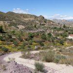 190406-2 (22) Piste Sierra de Cabrera (Sierra de Cabrera-Andalousie)