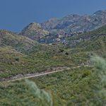 190406-2 (38) Piste Sierra de Cabrera (Sierra de Cabrera-Andalousie)