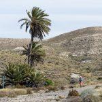 190408-1 (13) Cala & playa de Carnaje (Cabo de Gata-Andalousie)