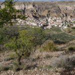 190409-2 (41) Désert de Gorafe (Andalousie)