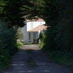 190430 - (274) Ile d yeu (Vendée)