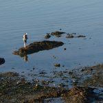 200914-(145) Pen bé (Loire atlantique)