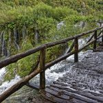 0630-Parc national lacs de Plitvice (Lika-Croatie)