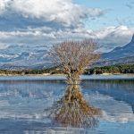 150126-Lac Mediano le matin (Sobrarbe) (15)_1