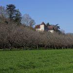 160319-Château de Goudou (Allas les mines - Périgord noir) (10)