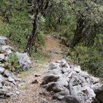 160628-De San Victorian à la grotte d'Espluga d'O Forato (Sobrarbe-Aragon) (20)