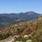 170929-Avant canyon Anisclo-Marche Nerin Mondoto Anisclo supérieur Ouest Nerin (121)