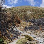 170929-Avant canyon Anisclo-Marche Nerin Mondoto Anisclo supérieur Ouest Nerin (137)