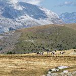 170929-Avant canyon Anisclo-Marche Nerin Mondoto Anisclo supérieur Ouest Nerin (152)