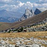 170929-Avant canyon Anisclo-Marche Nerin Mondoto Anisclo supérieur Ouest Nerin (154)