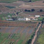 180310-1-Montée du Cerro Negro (Cabo de Gata - Andalousie) (45)