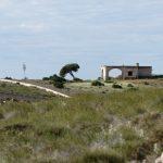 180310-1-Montée du Cerro Negro (Cabo de Gata - Andalousie) (53)