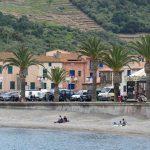 180428-2-Collioure (158) (Pyrénées orientales)