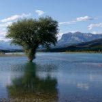 190612-2 (17) Lac de Mediano (Sobrarbe-Aragon)