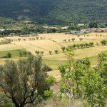 190613-1 (16) Besians (Ribagorza-Aragon)