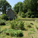 190816-3 (24) Bezenac ferme et chateau du Panassou (Dordogne)