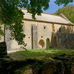190816-4 (36) Redon-Lespic (Dordogne)