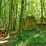 200729-(27) Balade Castrum de Caumarque (Périgord noir)