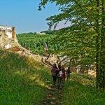 200729-(32) Balade Castrum de Caumarque (Périgord noir)