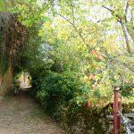 200819-(36) Boucle Berbiguière (Dordogne)