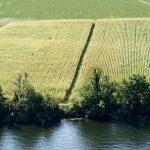 200905-(26) Cingle de Trémolat (Dordogne - Périgord noir)