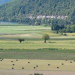 200905-(33) Cingle de Trémolat (Dordogne - Périgord noir)
