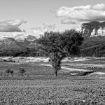 201005-(23) Lac Mediano niveau très bas (Aragon-Sobrarbe)_1