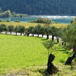 201006-(12) Liguerre de Cinca (Aragon-Sobrarbe)