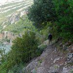 201006-(54) Entremon (Aragon-Sobrarbe)