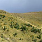 201007-(113) Sestrales alta (Aragon-Sobrarbe)