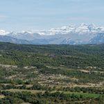 201008-(139) Olson (Aragon-Sobrarbe)
