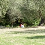 201008-(166) Alquezar les passerelles (Aragon-Somontano)