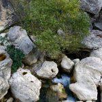 201008-(271) Alquezar les passerelles (Aragon-Somontano)