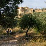 201008-(310) Alquezar les passerelles (Aragon-Somontano)