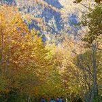 201010-(101) Cascades Cinca et La Larri (Aragon-Sobrarbe)