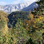 201010-(104) Cascades Cinca et La Larri (Aragon-Sobrarbe)