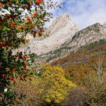 201010-(107) Cascades Cinca et La Larri (Aragon-Sobrarbe)