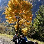 201010-(117) Cascades Cinca et La Larri (Aragon-Sobrarbe)