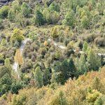 201010-(138) Cascades Cinca et La Larri (Aragon-Sobrarbe)