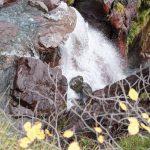 201010-(211) Cascades Cinca et La Larri (Aragon-Sobrarbe)