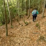 201010-(231) Cascades Cinca et La Larri (Aragon-Sobrarbe)