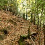 201010-(232) Cascades Cinca et La Larri (Aragon-Sobrarbe)