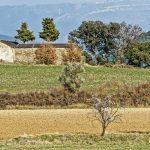 5372_Latorrecilla (Sobrarbe Aragon)_1