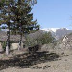 5732_Piste de Lacort à Burgasé (Sobrarbe Aragon)