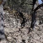 5745_Piste sous Gere (Sobrarbe Aragon)